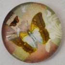 Klaaskamee Liblikas 18mm, 1 tk