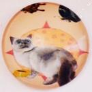 Klaaskamee Kass 18mm, 1tk