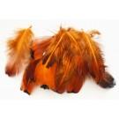 Перья 50-80x16-28мм тёмно-оранжевые, 10 шт.